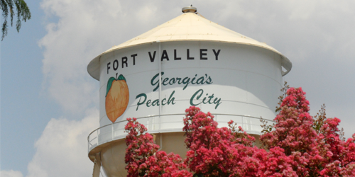 Fort Valley, Georgia Manufacturing